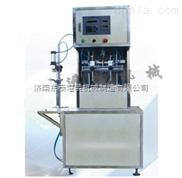 工业润滑油灌装机|润滑脂 塑料添加剂灌装机|润滑剂灌装机
