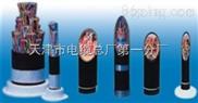 阻燃通信电缆HYAT防水电缆